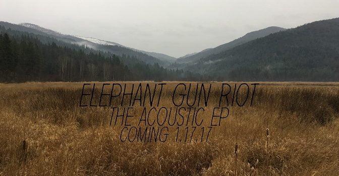 Elephant Gun Riot